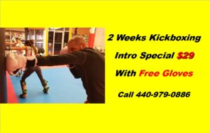 Kickboxing Website Ad